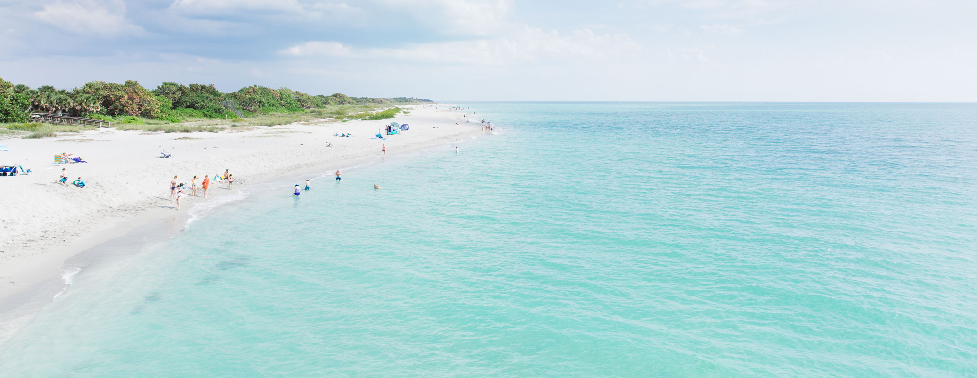 Beautiful Venice Beach - Venice Florida