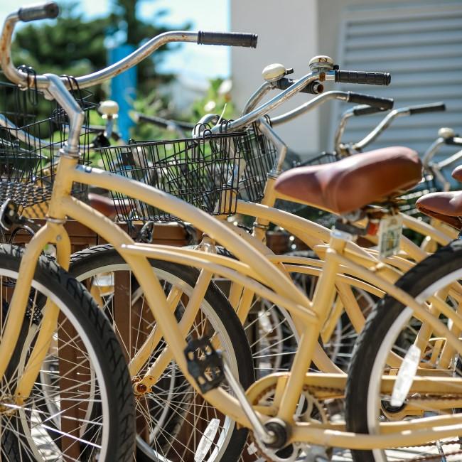 bicycles on Anna Maria Island
