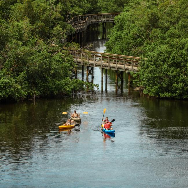 Kayaking in Bradenton Florida